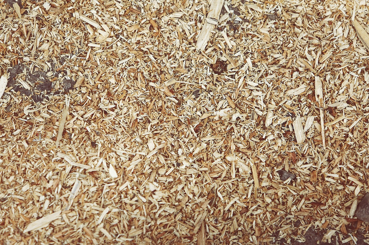 shredded-wood-407024_1280
